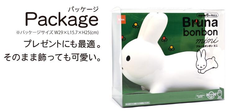 Package パッケージ